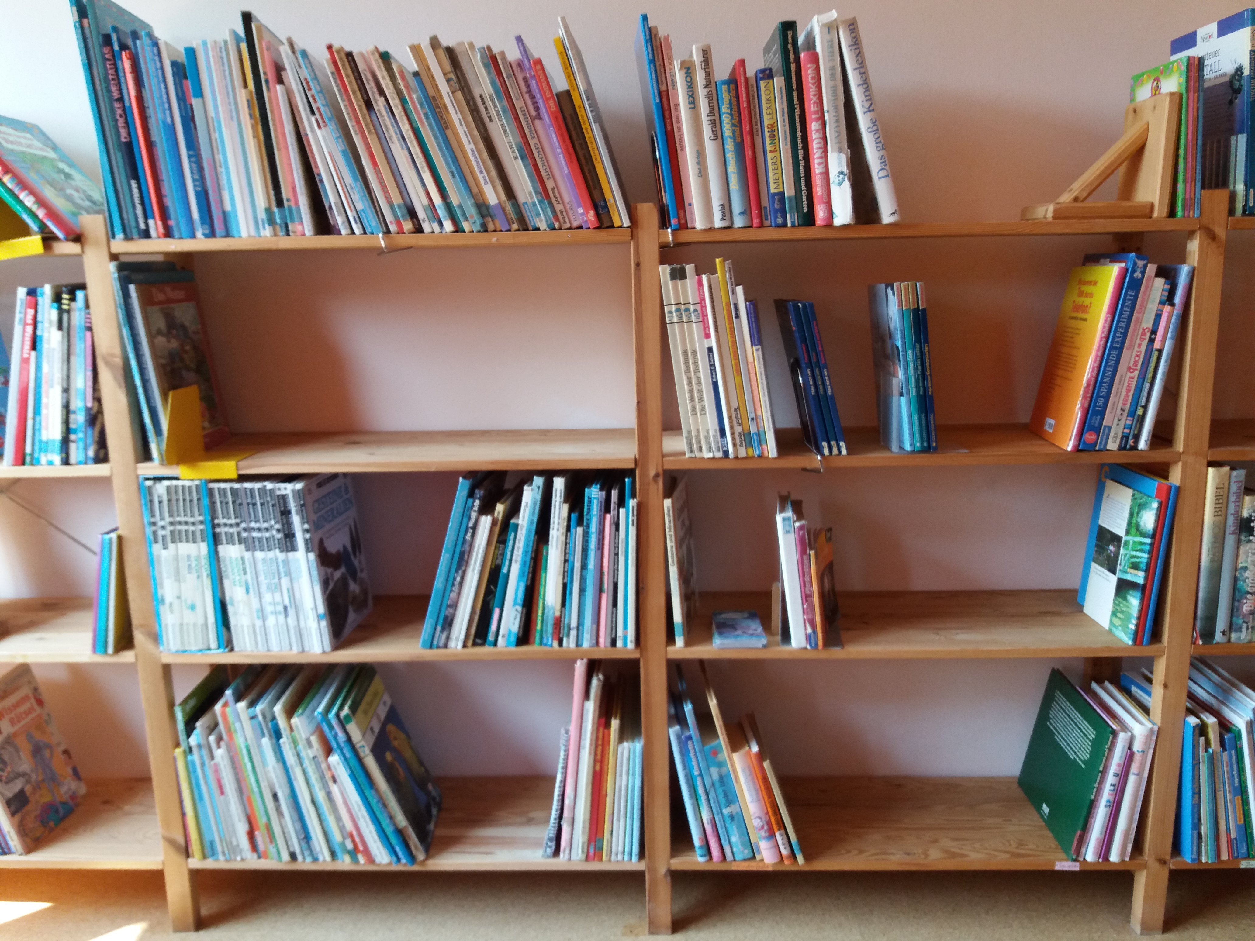 Bücherei EMR (1)